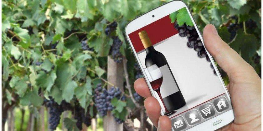 Perchè comprare vino online
